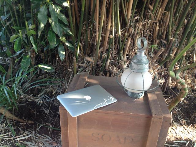 MacBookAirと林